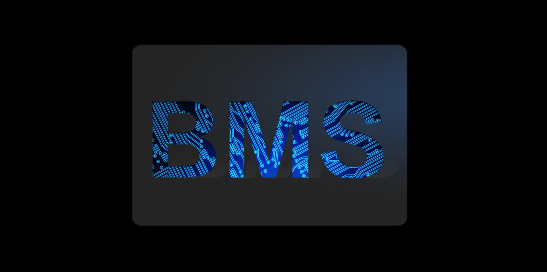 Geschützt mit einer doppelten BMS-Sicherheitstechnologie