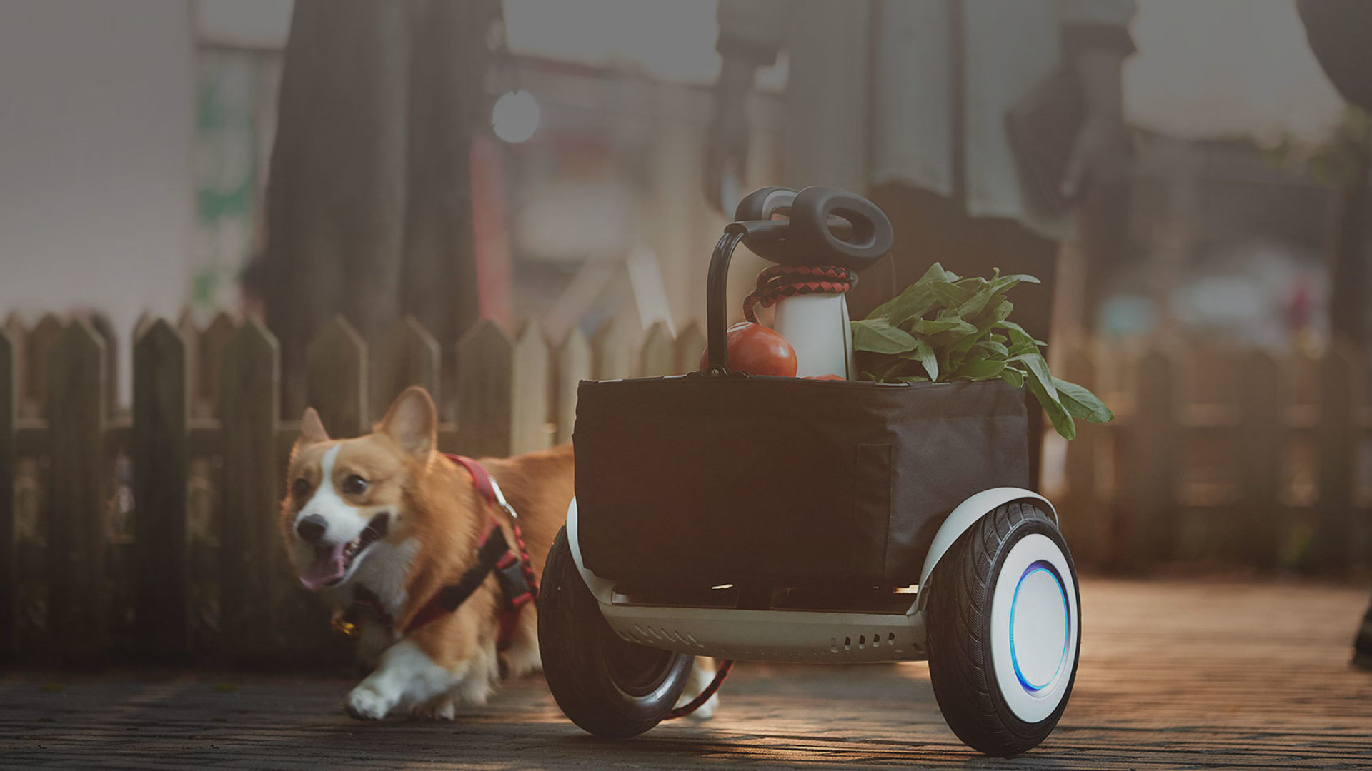 Let the Segway S-PLUS Carry Your Stuff